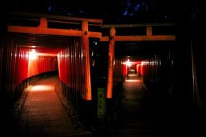 <動画 写真> 京都 伏見稲荷大社の千本鳥居はすごかった!  外国人が選んだ日本の観光スポット ナンバー1