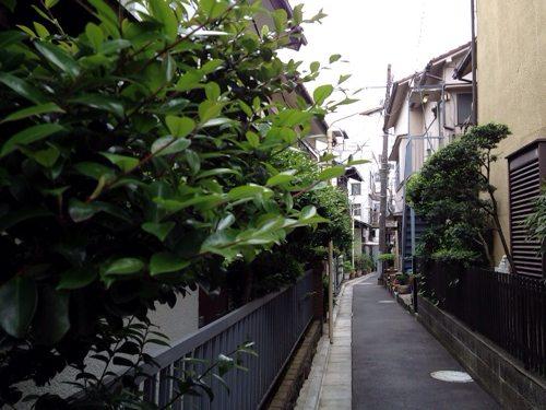 「代々木上原 街並み」の画像検索結果